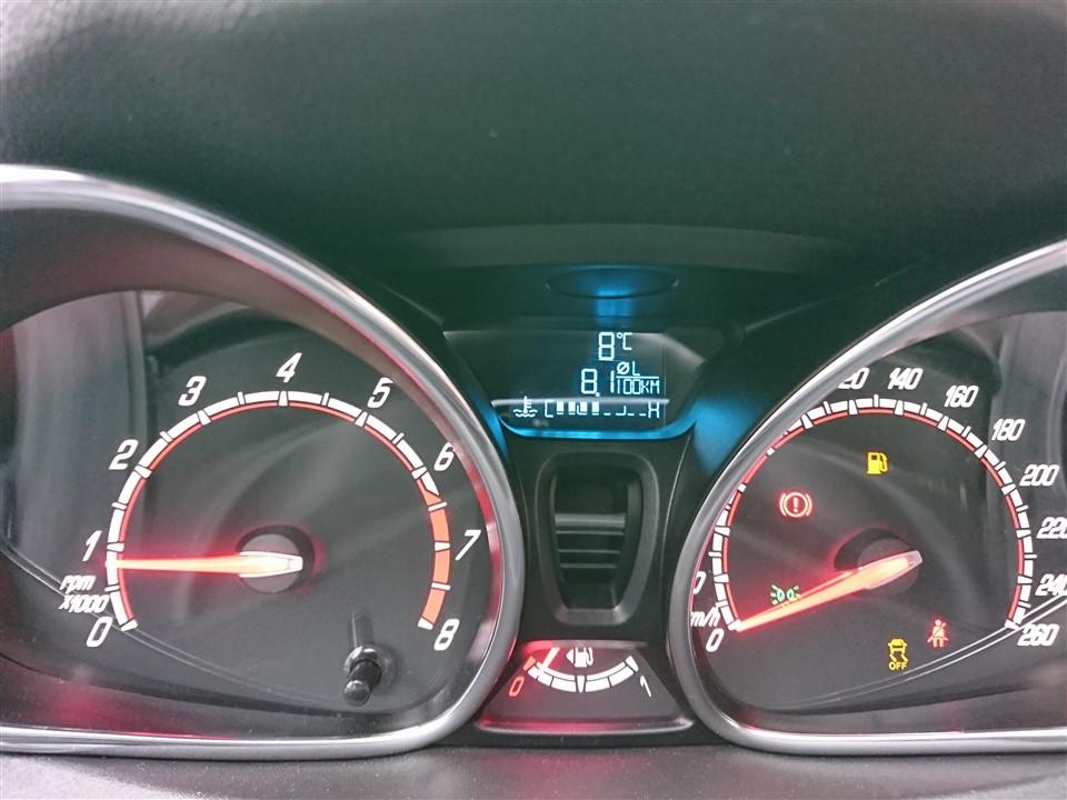 Consum mediu Ford Fiesta ST200